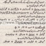 Urdu Past Paper 2nd year 2013 (Regular) Karachi Board